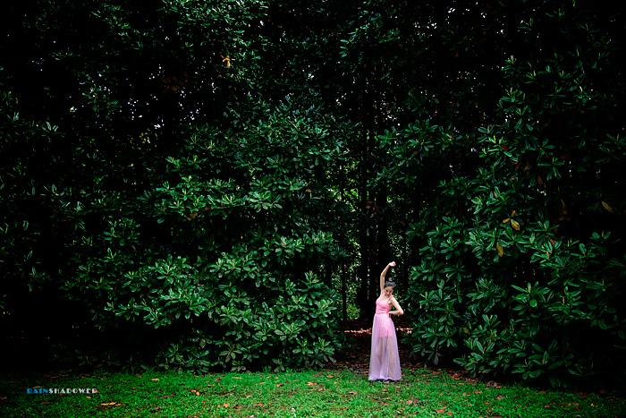 森林中的仙子
